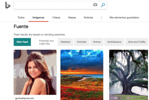 Bing Image Search buscador de imágenes