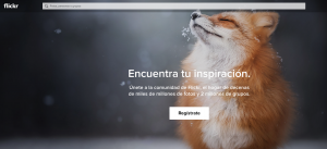Flickr buscador de imágenes